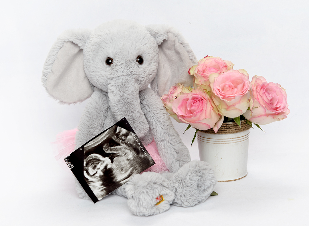 heartbeat bear elephant at 3d ultrasound michigan 3d baby boutique
